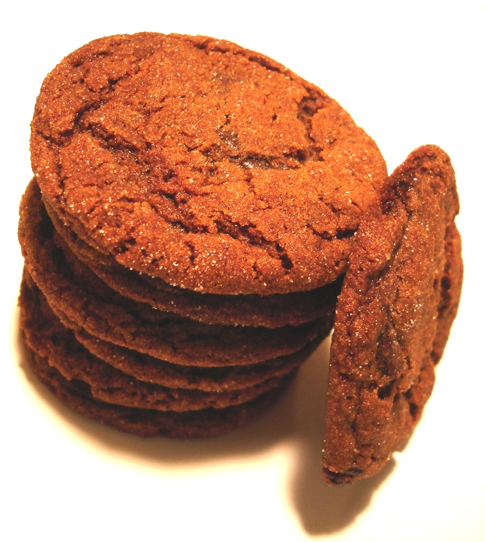 Chocolate Gingerbread Cookies | Try It You Might Like It