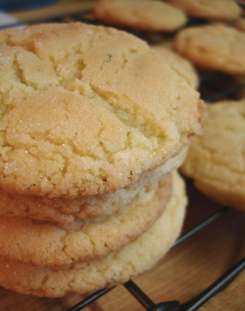 Lime Sugar Cookies | Try It You Might Like It
