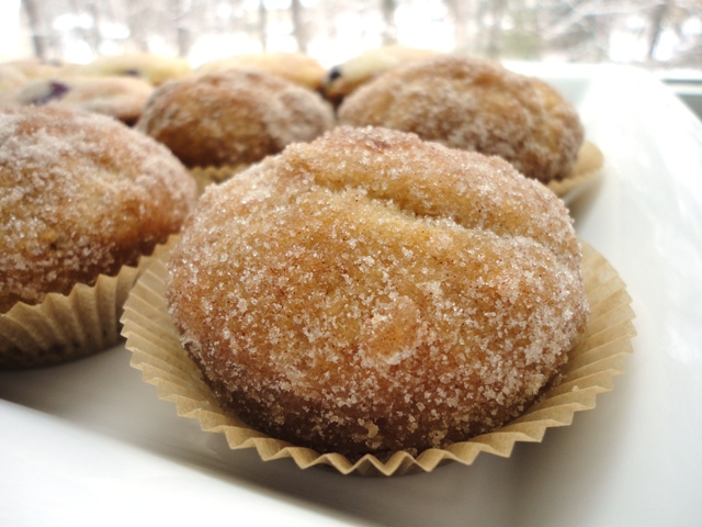 Donut Muffins | Try It You Might Like It