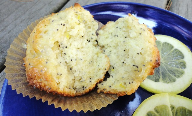 Lemon Poppy Seed Yogurt Muffins | Try It You Might Like It