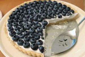 blueberry coconut tart 5